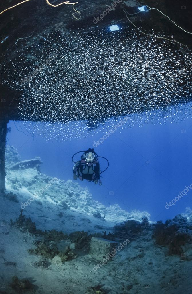 SUDAN, Red Sea, Sha'ab Rumi,U.W. photo; 16 November 2001, Cousteau Precontinent 2 structure, used in 1960 to study sharks behavior (FILM SCAN) - EDITORIAL