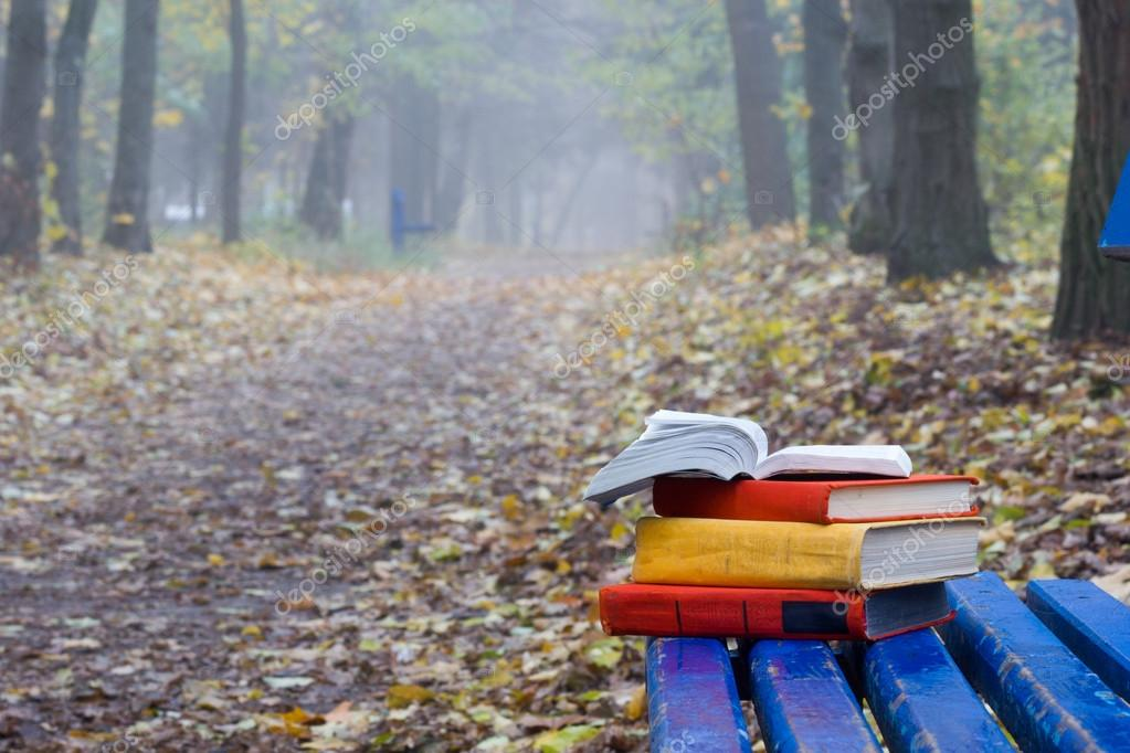 Stack of hardback book lying on a bench at sunset park  blurred nature backdrop.