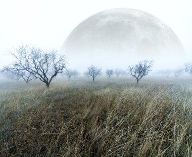 Foggy scenery and full moon