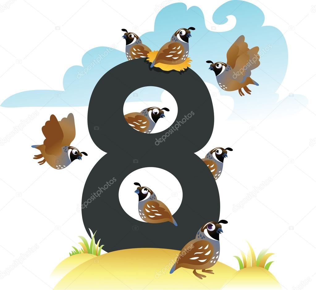collection number for kids wild animals number 8 birds u2014 stock