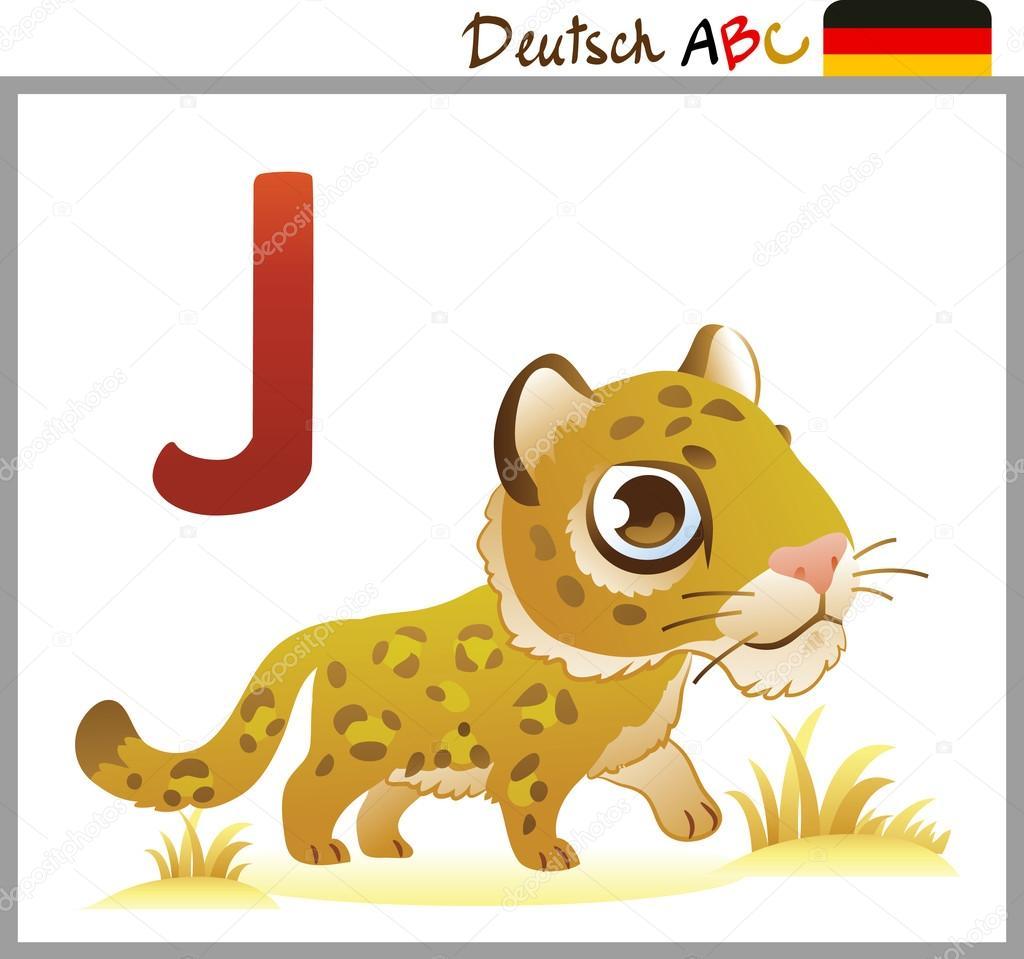 German or Deutsch Zoo Animals Alphabet for the kids: W for