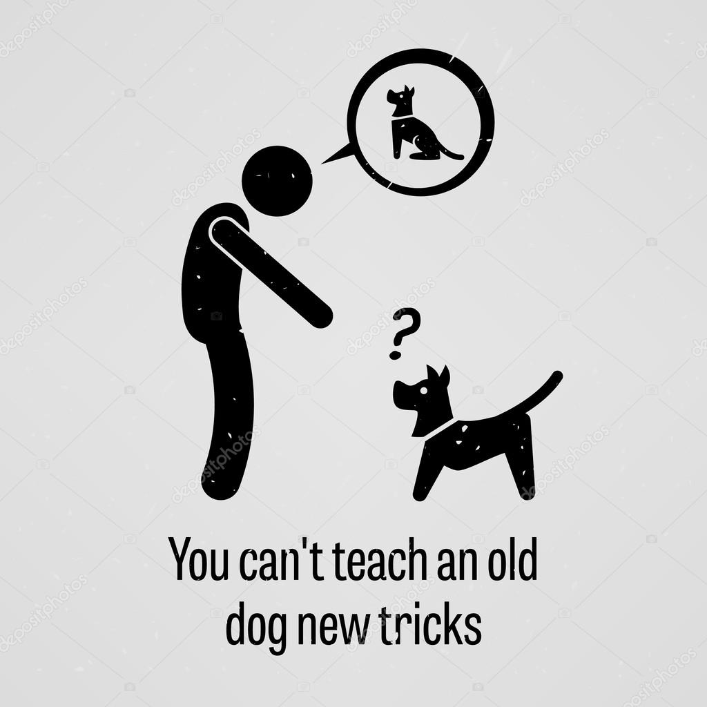 you can t teach an old dog new tricks This entry lacks etymological information if you are familiar with the origin of this term, please add it to the page per etymology instructions you can also discuss it at the etymology scriptorium.