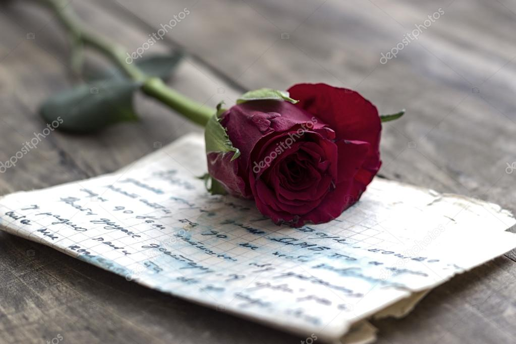 love letter and rose stock photo
