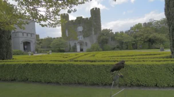 Slavné veřejné turistickou atrakcí v Irsku. Hrad, Dromoland hrabství Clare, Irsko