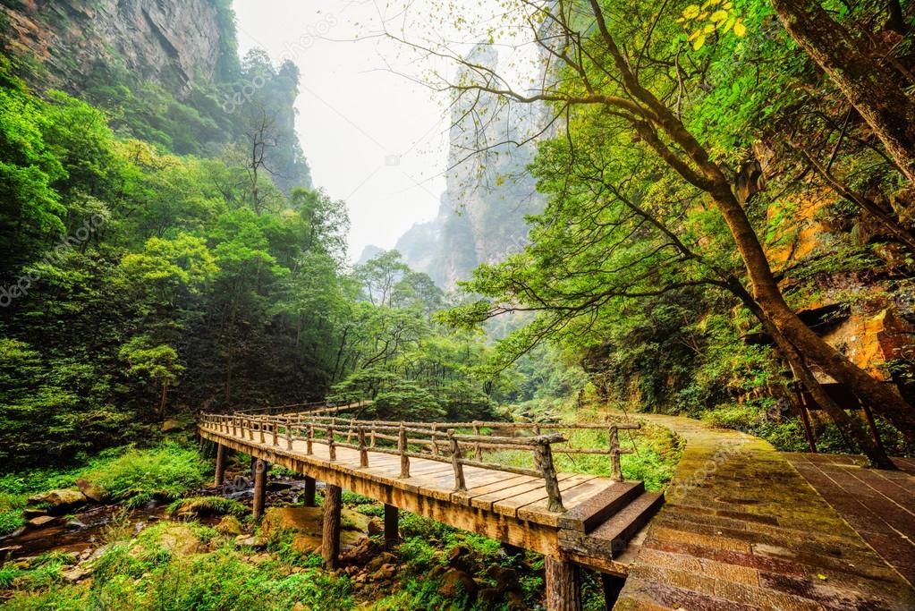 Scenic view of wooden bridge over river at bottom of deep gorge