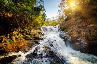 Beautiful view of waterfall. The sun is shining through trees