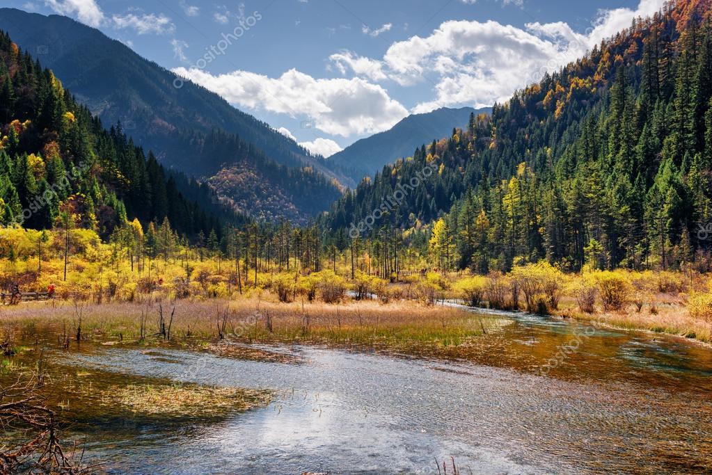 Beautiful view of a semi-marsh lake among wooded mountains