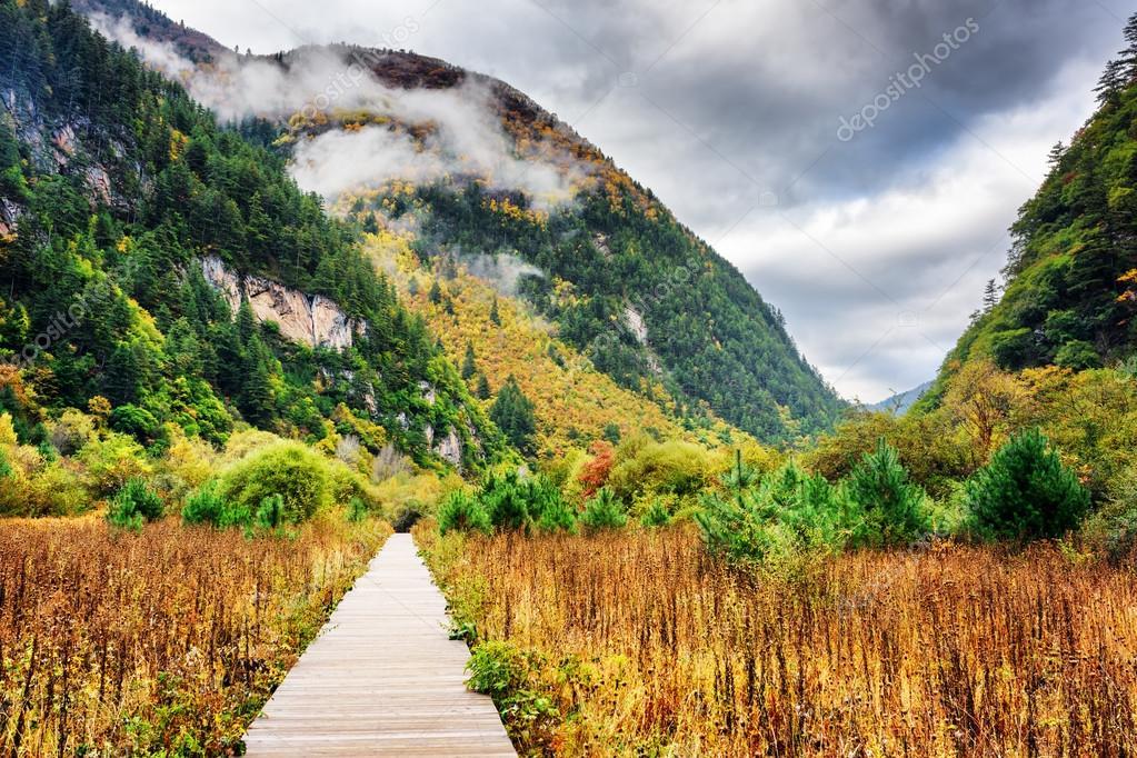 Фотообои Деревянным мосткам, ведущим в горы, Национальный парк Цзючжайгоу