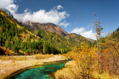 Beautiful green river with crystal clear water among fall fields