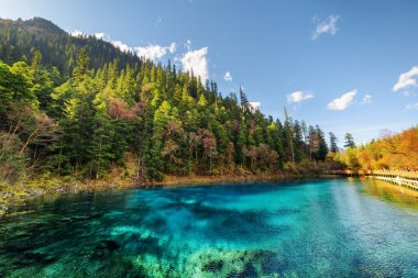 The Five Coloured Pool with azure water among autumn woods