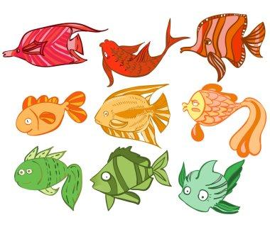 Multicolored charismatic fish