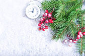 Vánoční pozadí s větve stromu