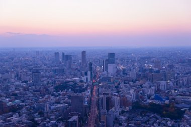 Tokyo in the twilight