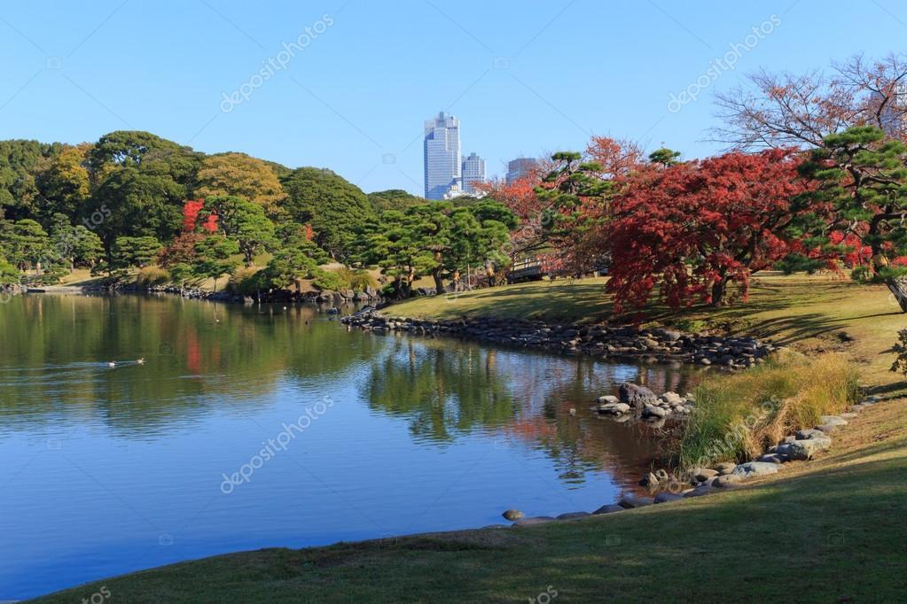 Autumn leaves in Hamarikyu Gardens, Tokyo