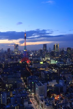 The city of Tokyo and Tokyo Tower Olympic illumination