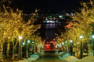 Hachimanzaka and the port of Hakodate at night in Hakodate, Hokkaido