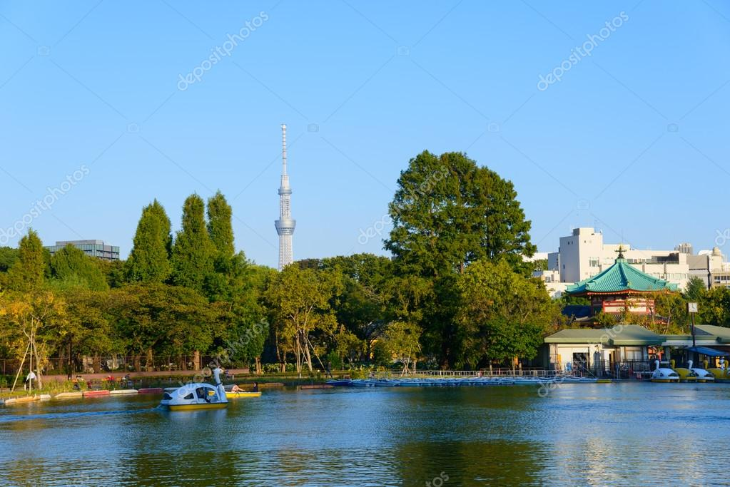 Shinobazu Pond and Tokyo Skytree