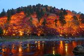 Autumn foliage in Korankei, Aichi, Japan