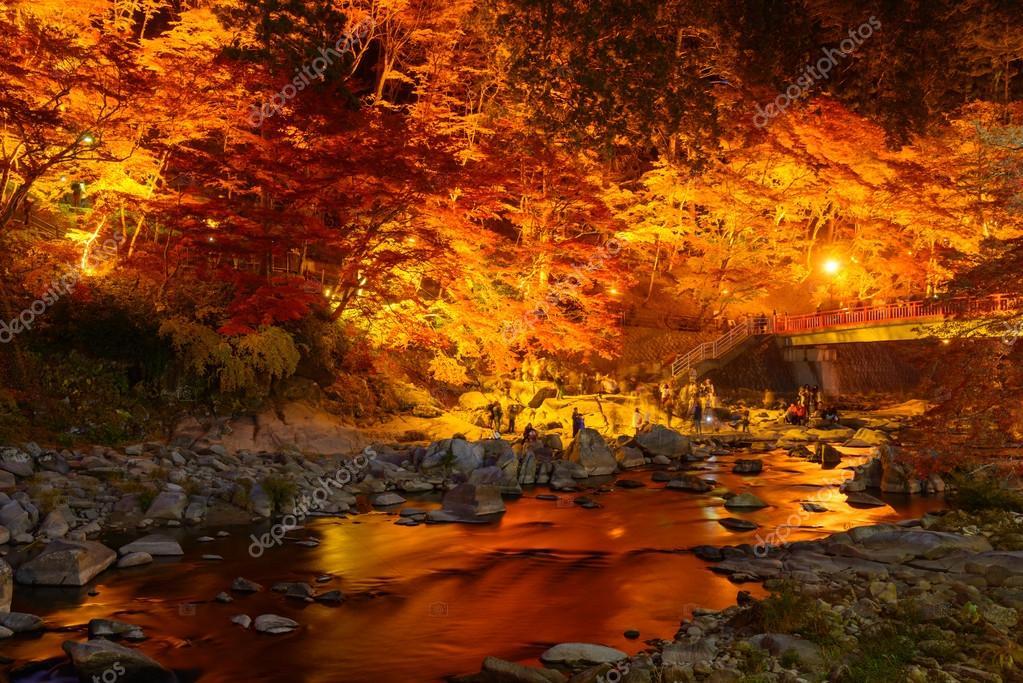 Follaje de oto o en korankei aichi jap n foto de stock - Descargar autumn leaves ...
