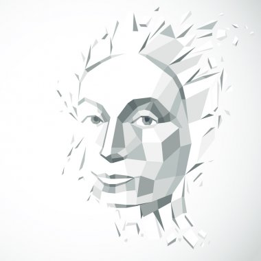 low poly face with splinters
