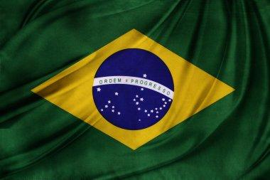 Silky Brazil flag