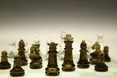 Fotografie Chess