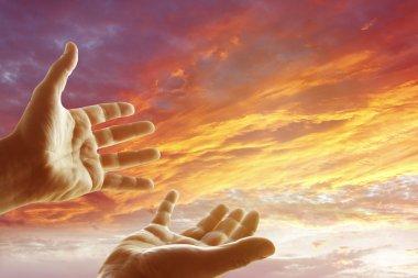 Hands in sky