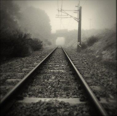 Steel railway tracks