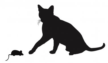 Cat and mouse  silhouettes on white
