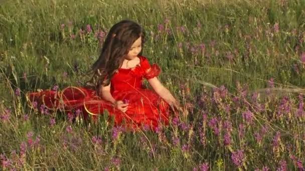 Schöne kleine Mädchen im Bereich der Lavendel
