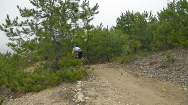 EDITORIAL. Three Mountain Bikers Going Fast Downhill In Forest