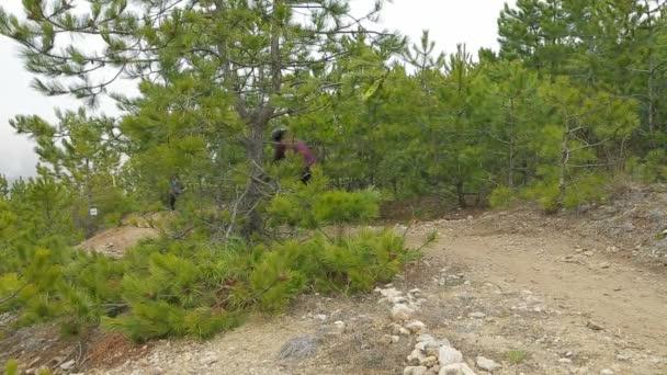 Úvodník. Dva motorkáři, pohybující se z kopce v borovém lese