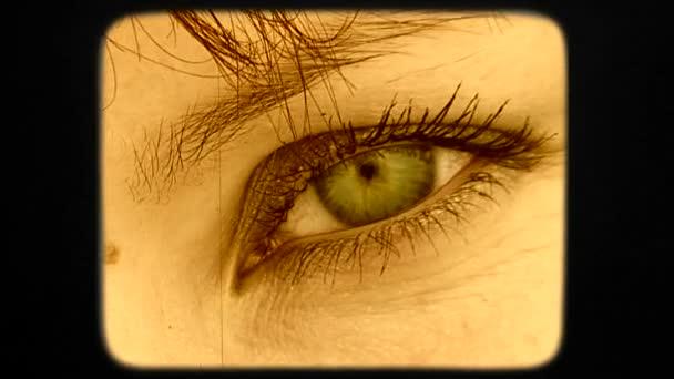Beautiful Green Eye Of Dark Haired Woman Looking Into Camera