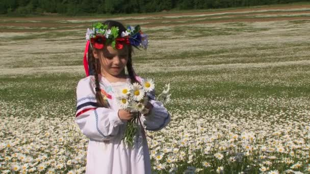 Cute Little Girl With Chamomiles In The Field