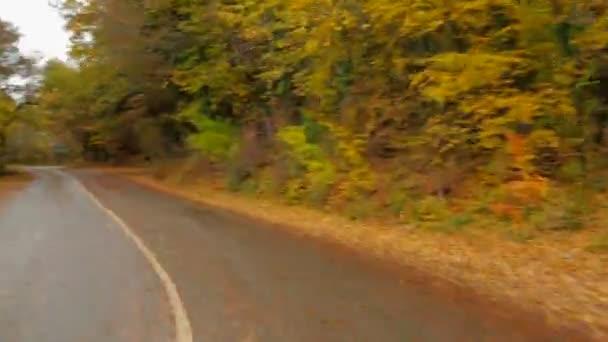 Osobní automobil v podzim lesní cestě vinutí