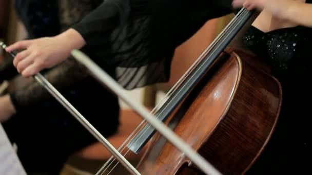 Női zenész csellójáték