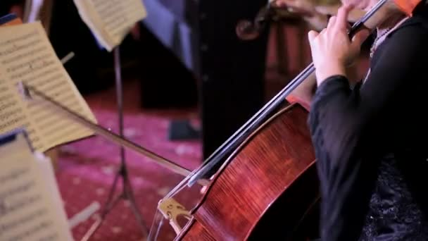 Professional Cellist Playing Classical Music On Cello