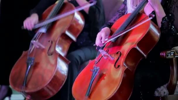 zwei Musiker spielen Cello bei Konzert
