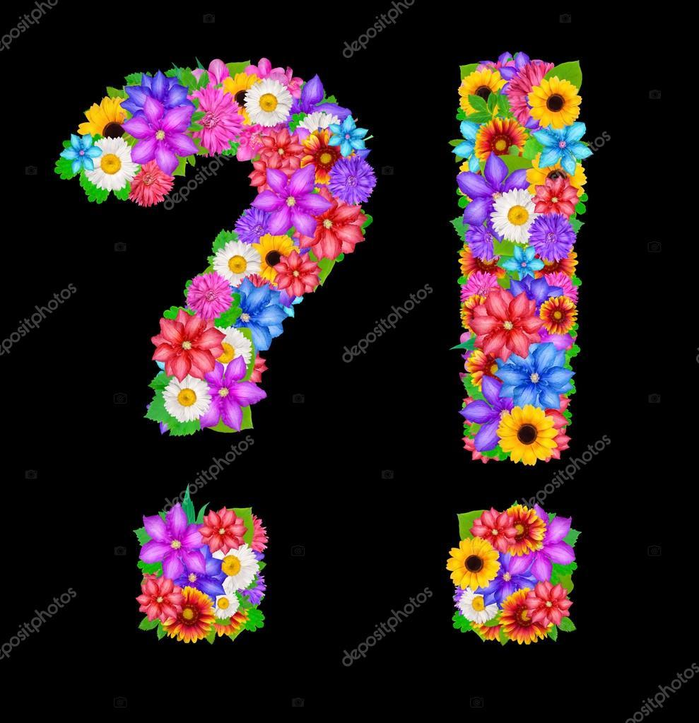 Satzzeichen mit Blüten - Stockfotografie: lizenzfreie