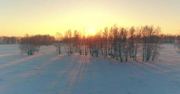 Letecký bezpilotní pohled na studenou zimní krajinu s arktickým polem, stromy pokryté mrazivým sněhem a ranními slunečními paprsky nad obzorem.