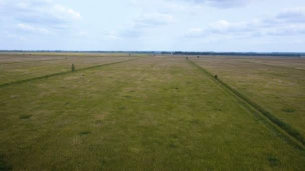 Anténa: Letu nad pole pšenice.