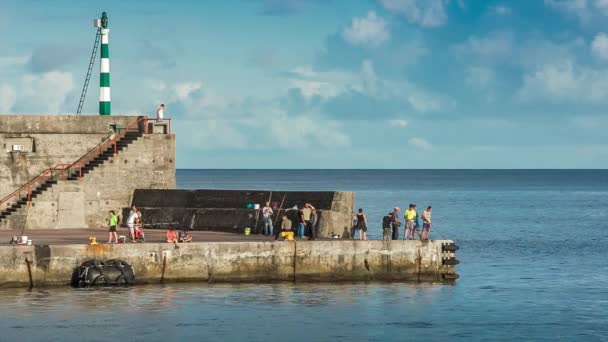 Makrill fiske i hamnen, magic lantern raw video