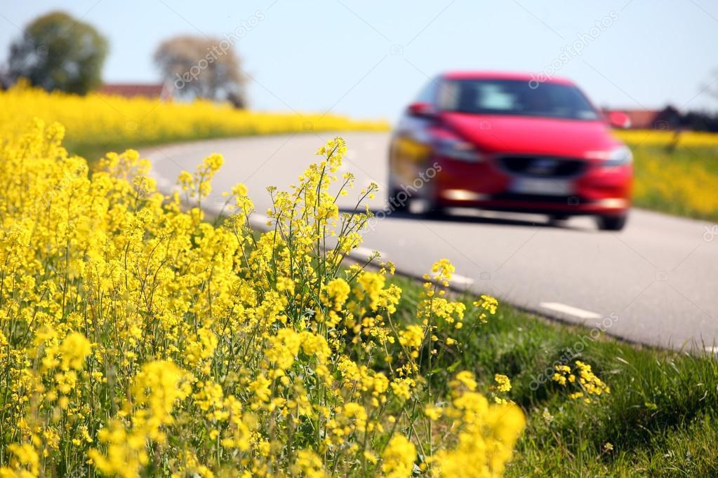 Stijlvolle Boerderij Zweden : Geel koolzaad velden en een rode auto in zweden u stockfoto