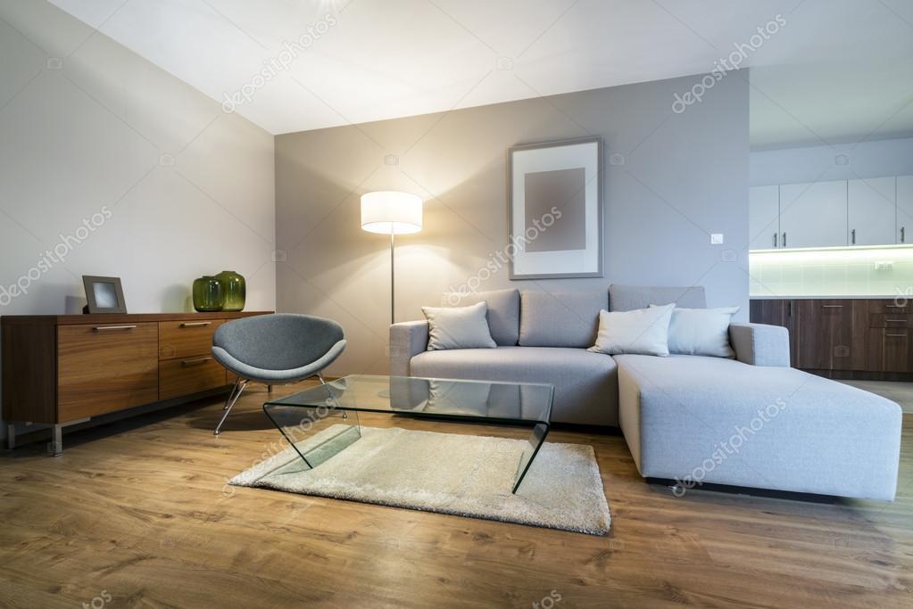 Fantastisch Moderne Wohnzimmer Gestaltung U2014 Stockfoto