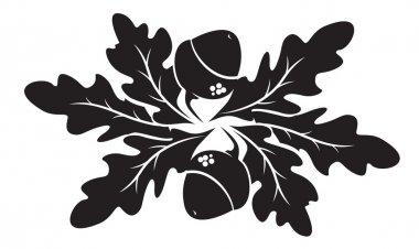 acorns ornament vector