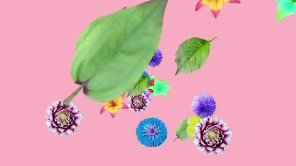 Die Animation von Blumen und Blättern entsteht auf einem rosa Hintergrund. Größe anpassen. 3d. Dekorative Postkarte. Bildschirmschoner. ... festlich. Modisch schön. Design. Präsentation, Rückhalt