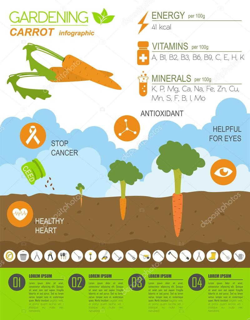 Gardening infographic new_30