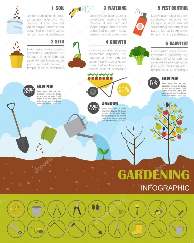 Gardening work, farming infographic. Graphic template. Flat styl
