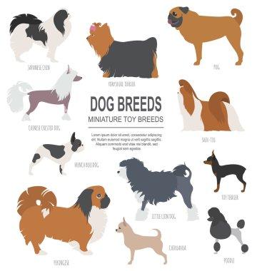 Dog breeds. Miniature toy dog set icon. Flat style