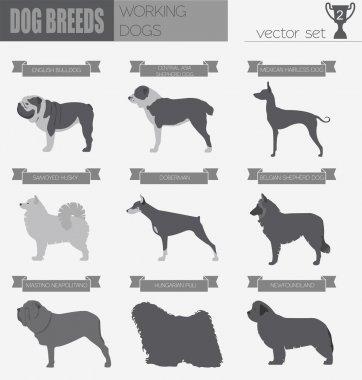 Dog breeds. Working (watching) dog set icon. Flat style